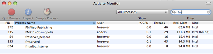 FileMaker ODBC service in Activity Monitor