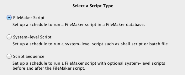 FileMaker Server script types